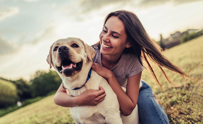 Animales de compañía: ¿cómo ser un dueño responsable?
