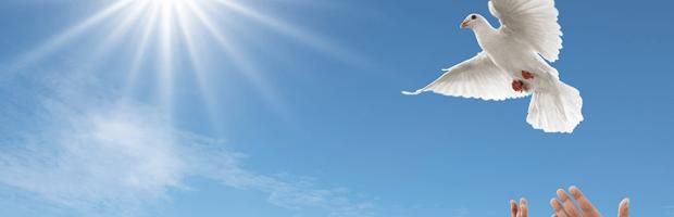 Consejo para el Ayuno de Daniel: ¿Cómo recibir el Espíritu Santo en 21 días?