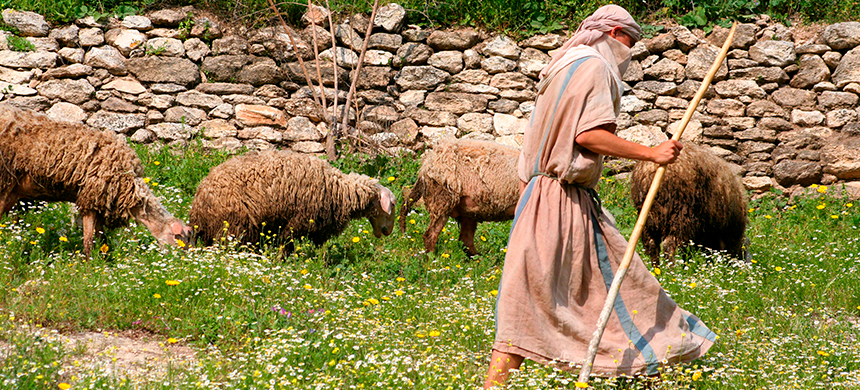 Costumbres de la Biblia: el trabajo de los pastores