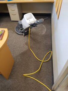 carpet care services carpet cleaning commercial Hamilton clean workspace