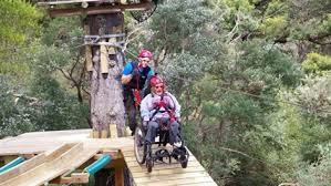 Wheelchair users enjoying the inclusive camp high ropes activity.