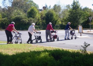 four women using wheelie walkers are crossing the road in single file.