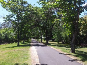A tree-lined walkway with a wide grey path with a gravel edging. there is grass on either side. Beyond the city- regional and rural.