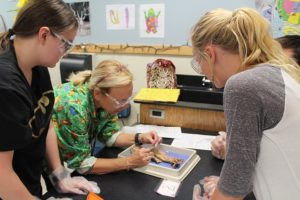 Two students look on while the teacher shows how to dissect an animal. They are wearing gloves and safety glasses