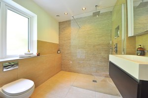 A step free shower with a glass partition.