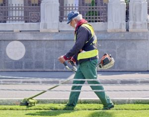 A man with grey hair is walking on grass and using a powered grass whipper snipper.