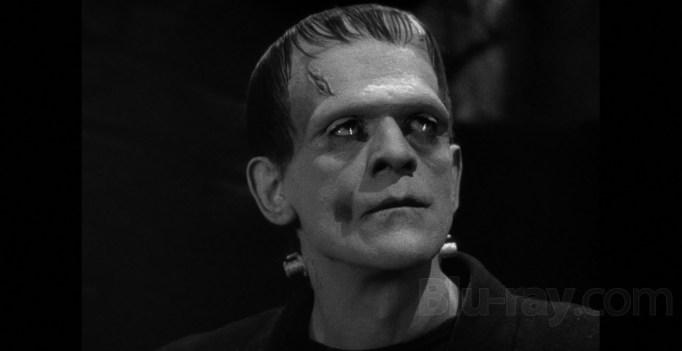 Frankenstein legacy