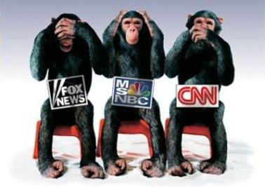 media_monkeys-338104707