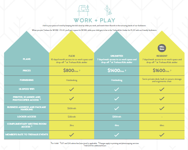 trehaus pricing model for work + play