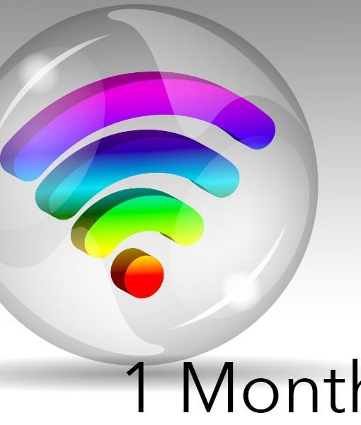 1-month-min