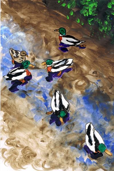 ducks141101