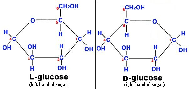 Glucose Ring Structure Alpha