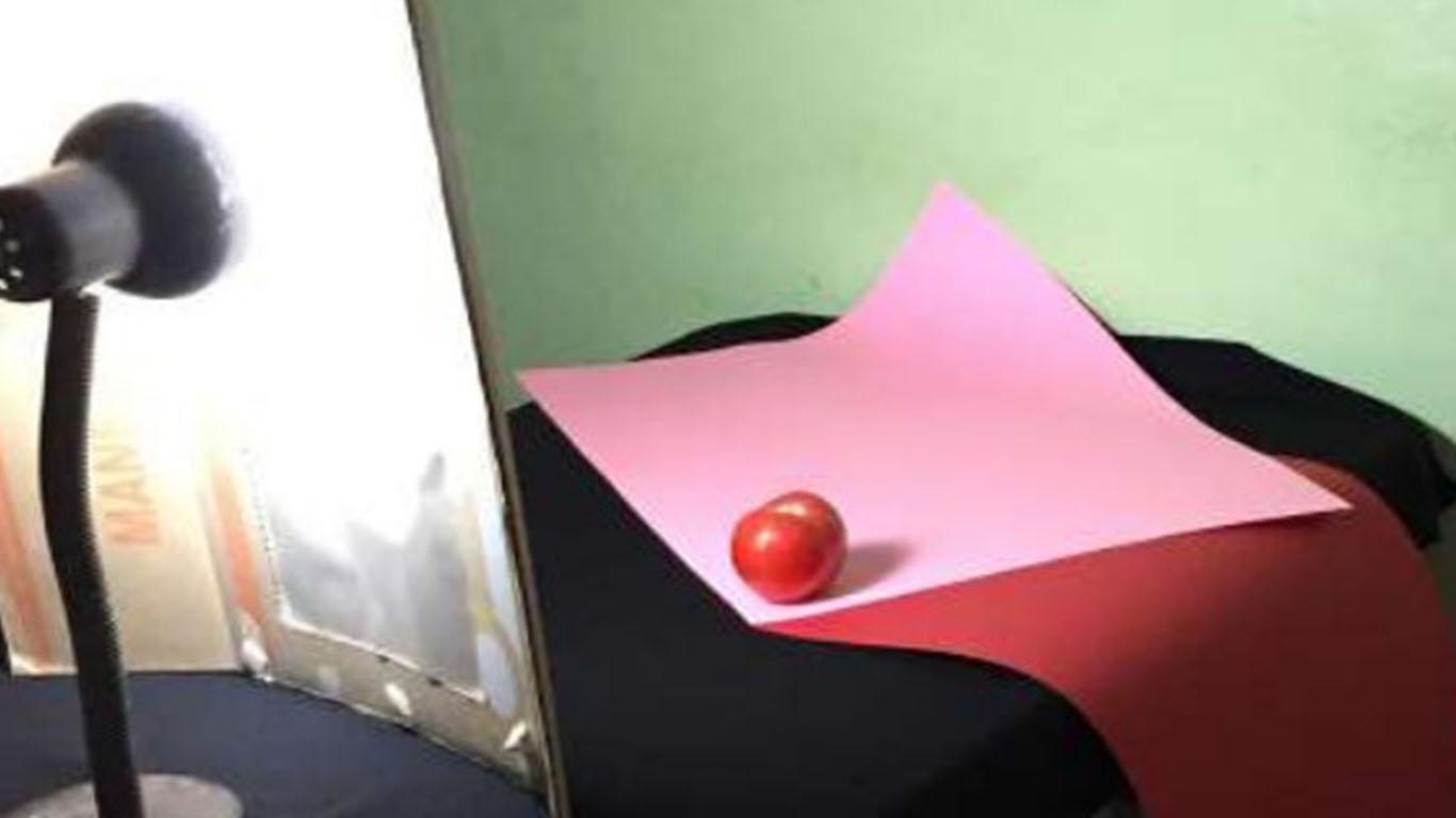 expo-virtual-agosto-2020-fotografia_0000s_0000_06 - Backstage Perspectiva Frutas y Verduras