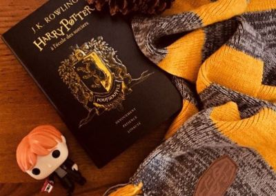 Harry Potter – Avis