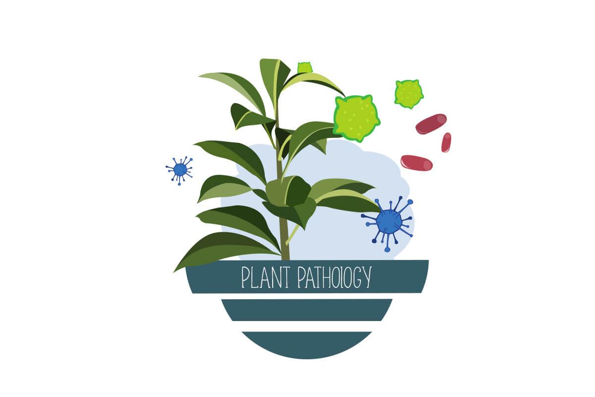 Plant Pathology For Upstart Farmers