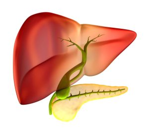 Gallbladder Pain Poses a Potential Problem for Seniors