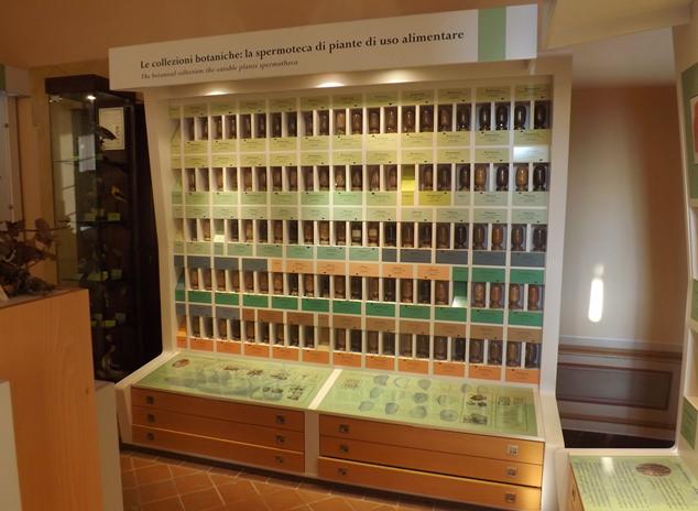 """The """"Paolo De Simone"""" Spermoteca at the Museum of Natural History and Lands of Città della Pieve. conservata presso il Museo di Storia naturale e del Territorio di Città della Pieve"""
