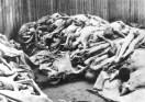 Pila de cuerpos en el campo de Mauthausen