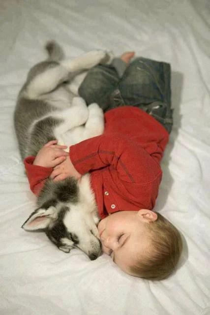 bimbo e cane stretti stretti