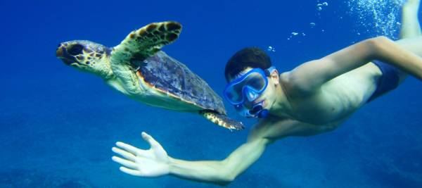 bimbo e tartaruga sott'acqua