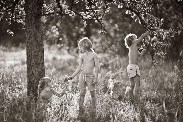 bambini raccolgono foglie