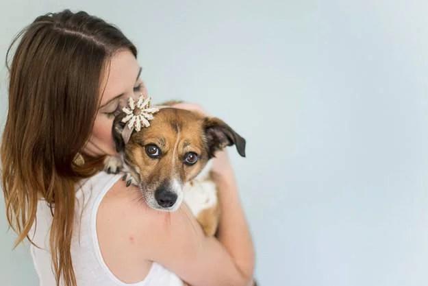 ragazza tiene in braccio cane