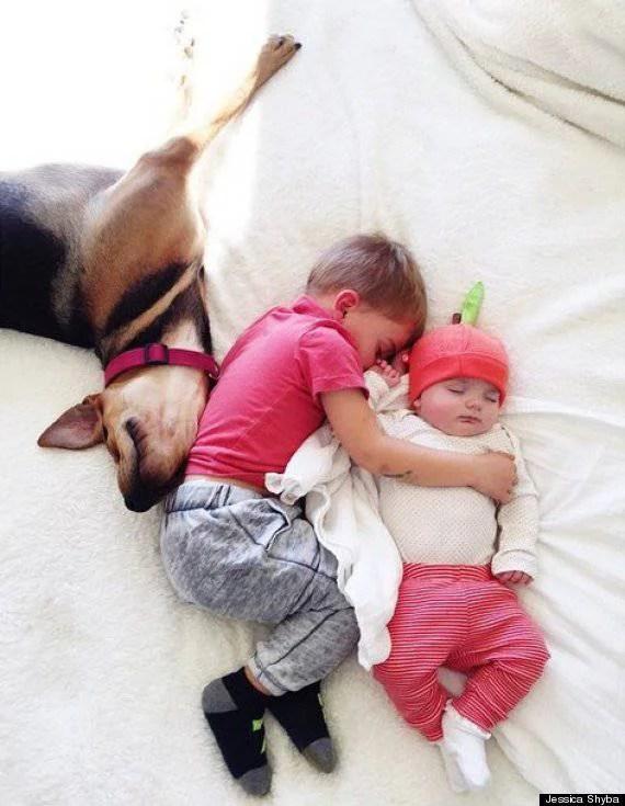 bambini giocano con cane
