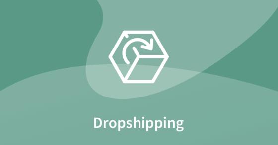 dropshipping dla początkujących