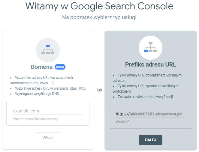 Google Search Console – typ usługi