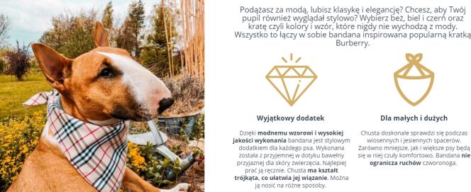 Glamdog.pl - przykład