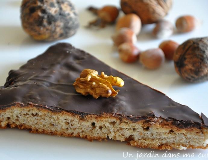 Gâteau aux noisettes, noix et chocolat