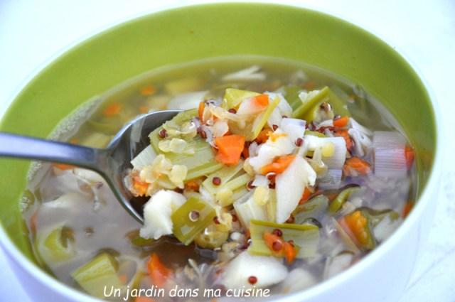 soupe quinoa lentilles et ses petits légumes