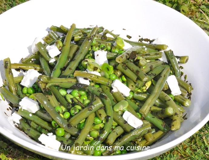 Trio de légumes verts feta menthe