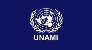 UNAMI-Baghdad-Information Management Systems-109483-PO