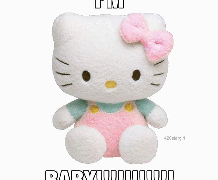 Sanrio memes: 14 Pictures of Awesome Cuteness