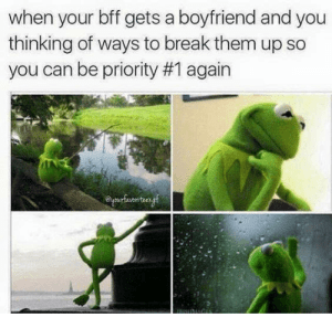 when your bff gets a boyfriend kermit the frog memes