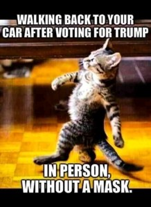 Welcome back from Voting. Can You please stop saying I Voted? Funny Votes memes, I voted Funny memes, Funny animal voting memes