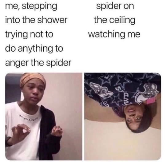 person spider on ceiling stepping into shower trying not watching do anything anger spider