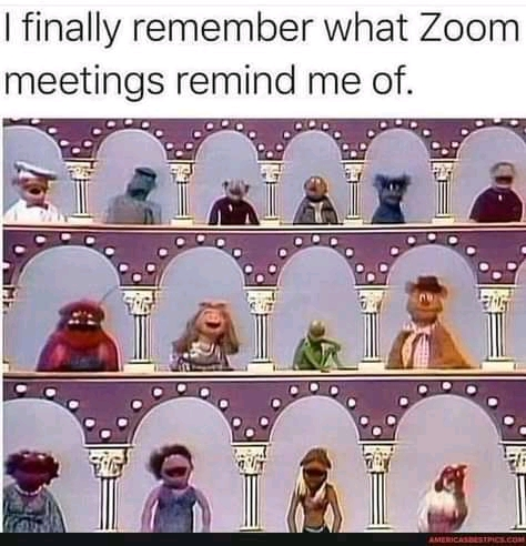 17 funny zoom memes