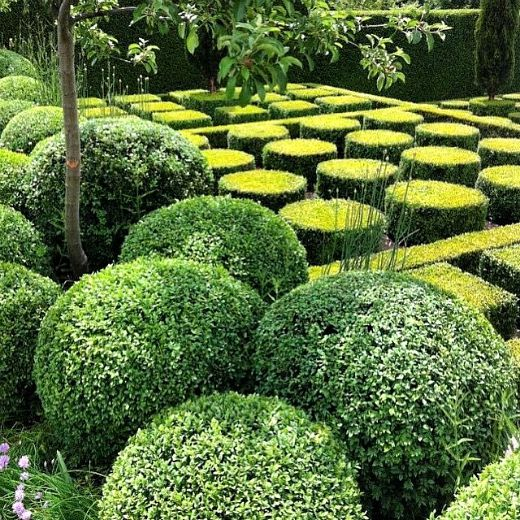 gardens22