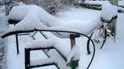 Schön weiß und schön kalt - der Winter schmückt die Neustadt.