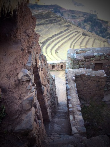 Inca terraces seen from fortress