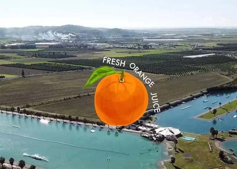 fresh-orange-juice-hip-notics