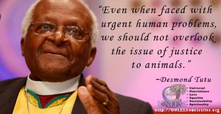 """Even when faced with urgent human problems, we should not overlook the issue of justice to animals."""
