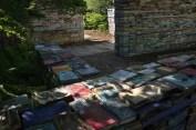 jardin-de-la-connaissance-7ct-folkerts