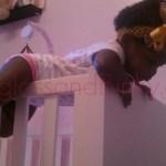 The Toddler Sleep Chronicles