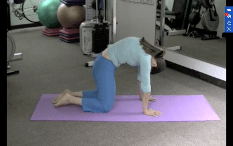Cat Cow Increases The Flexibility of Your Spine