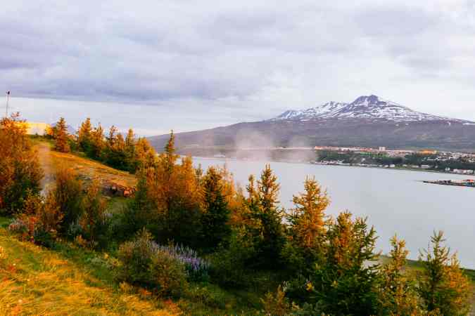 Glowing trees across the river from Akureyri / Glühende Bäume