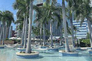 What You Must Do in Miami