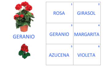 VOC-Flores-Ej4